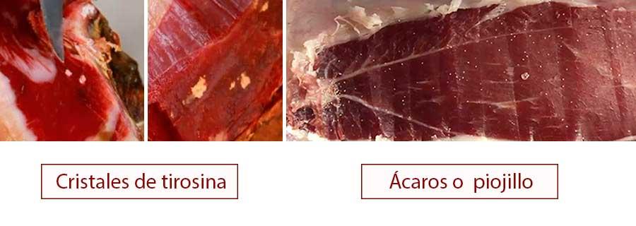 Bichos en el jamón vs manchas de tirosina