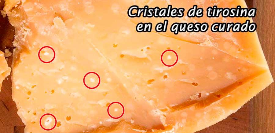Tirosina alimentos: en el queso curado
