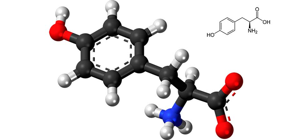 Agujas tirosina cristales